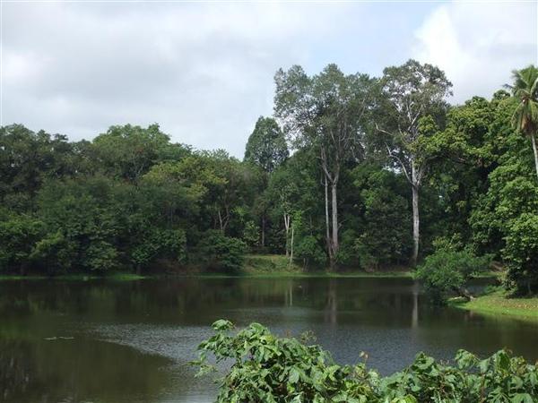 吳哥寺廟群