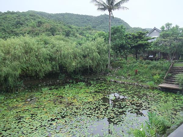後湖水月 (25).jpg