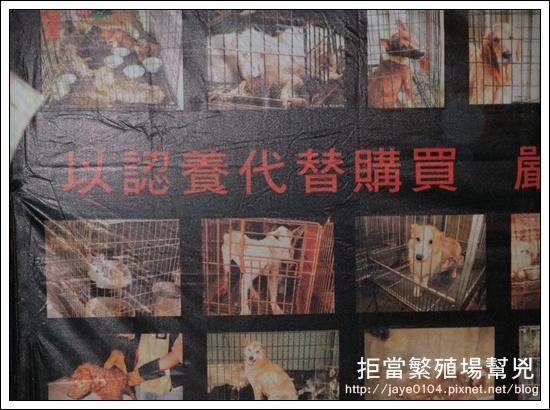 飢餓、囚禁、死亡:買寵物的背後 (38).jpg
