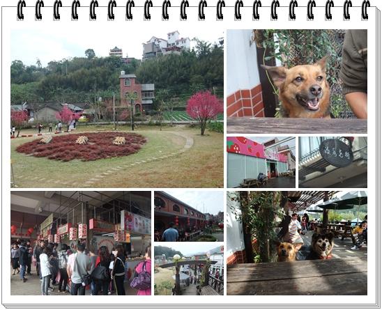 大湖 (11).jpg