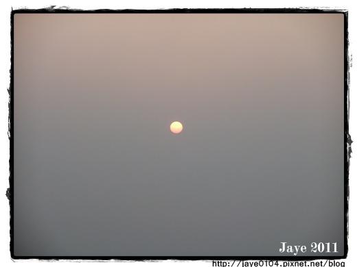 月光森林 (6).jpg