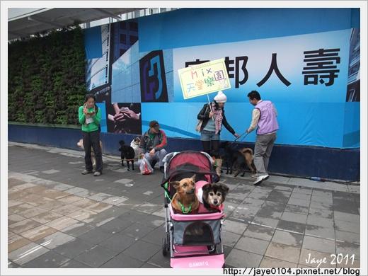 2011寵物嘉年華 (6).jpg