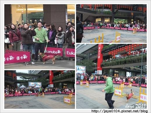 2011寵物嘉年華 (11).jpg