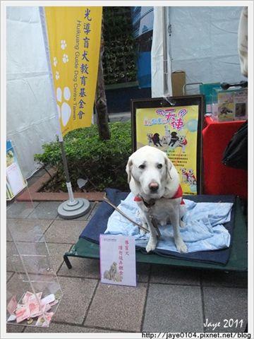 2011寵物嘉年華 (17).jpg