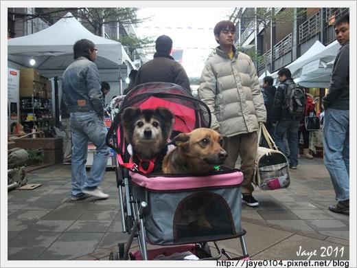 2011寵物嘉年華 (2).jpg