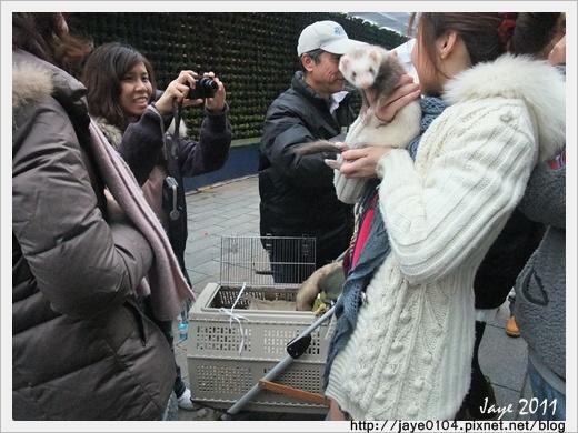 2011寵物嘉年華 (3).jpg