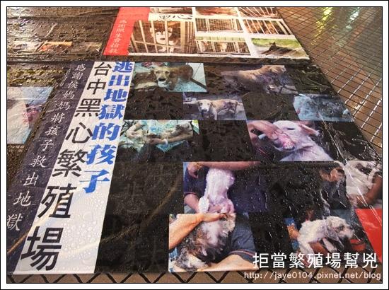 飢餓、囚禁、死亡:買寵物的背後 (35).jpg