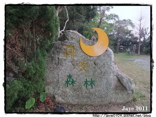 月光森林 (1).jpg