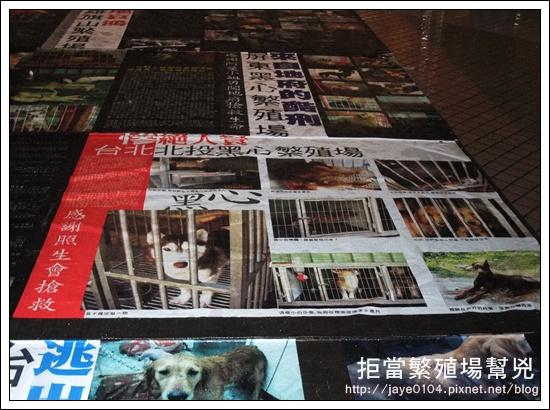 飢餓、囚禁、死亡:買寵物的背後 (36).jpg