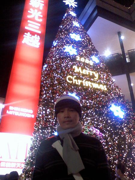 +笨豬的聖誕樹