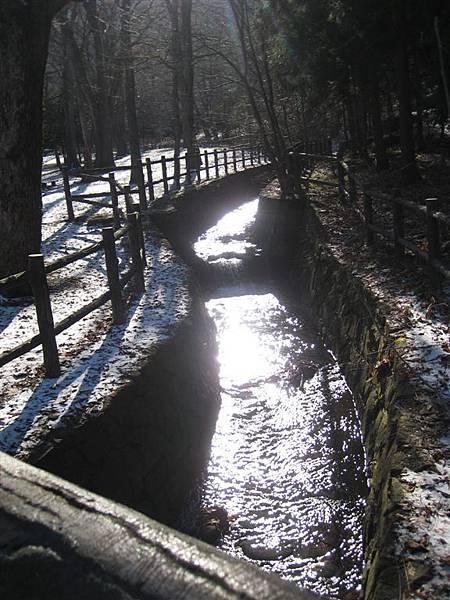 上山前的橋下,發亮的小河