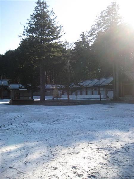 晴朗的雪景