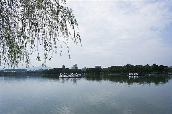 DSC01690.jpg