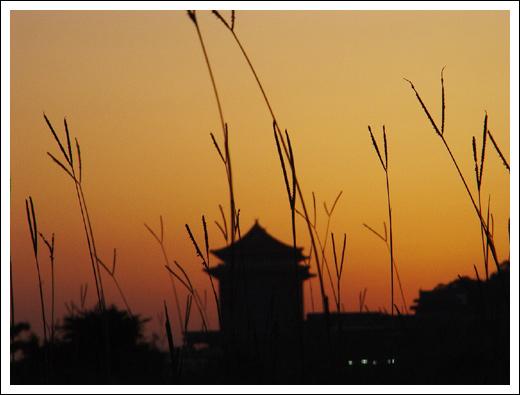 大佳河濱公園-05