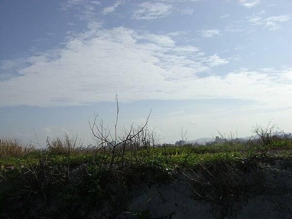 2008_1020_05.jpg
