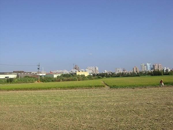 2008_1020_04.jpg