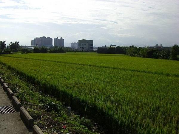 2008_1020_02.jpg
