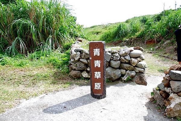 38.青青草園.jpg
