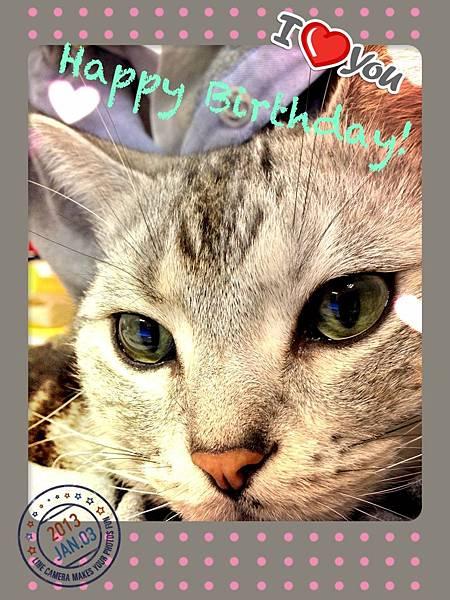 胖子八歲生日