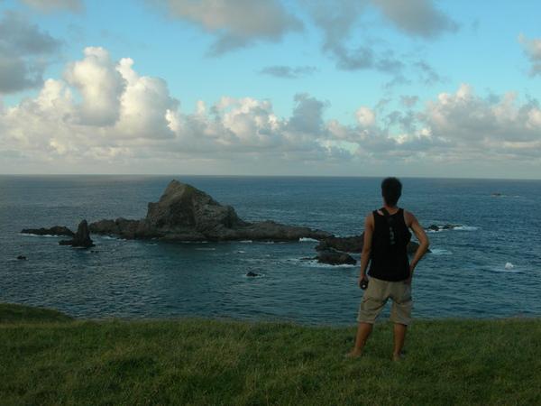 對面的島很多鳥