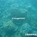 昇降式半潛水艇(海底世界)