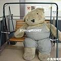 超人氣布娃娃熊