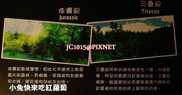 DSC05946_1.JPG