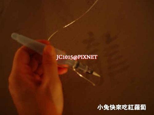 DSC05748.JPG