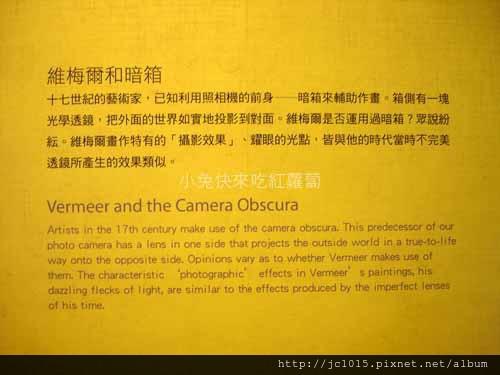 珍珠之光-透視維梅爾