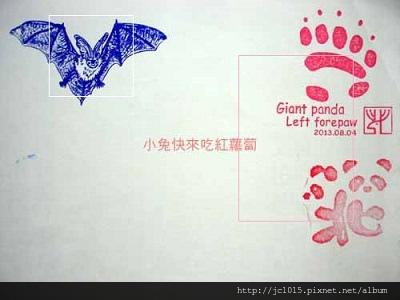 台灣蝙蝠學會+動物園