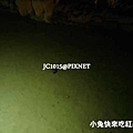 王國村-玉泉洞(流經石灰岩區之地下水-終於拍到魚了)