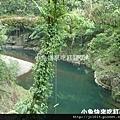DSC05623_猴橋&盪鞦韆.jpg