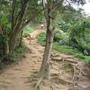 不是階梯就是這種山路