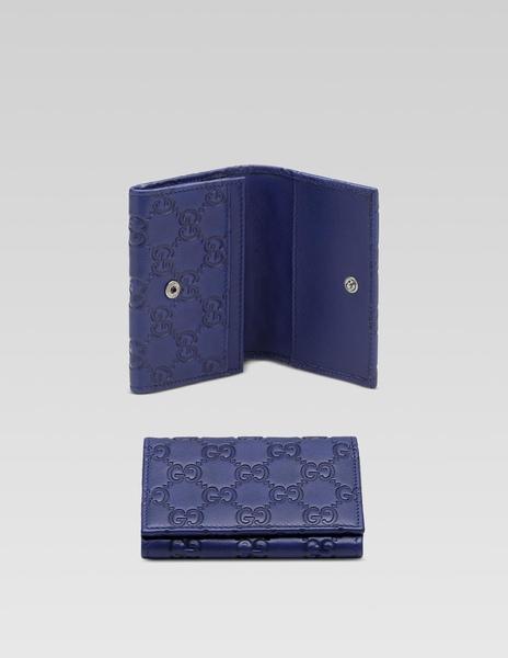 card case-blue.jpg