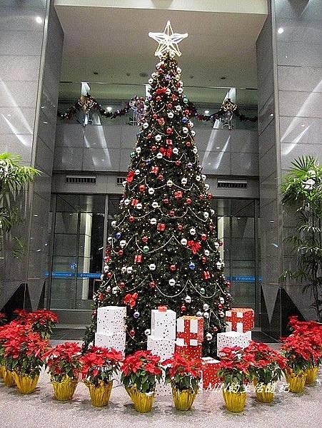 聖誕樹 (5)