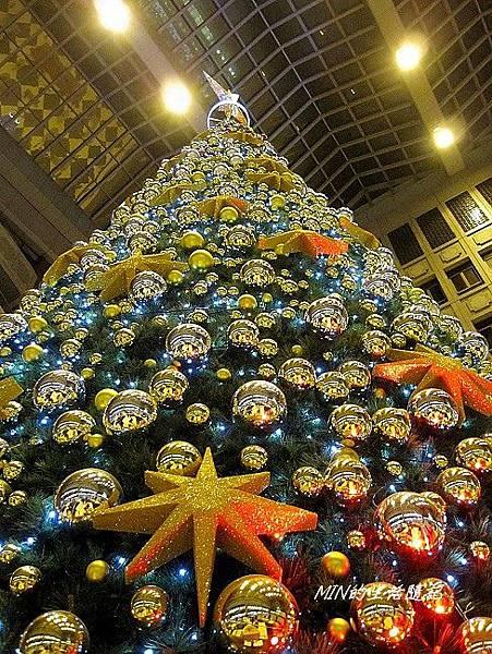 聖誕樹 (13)