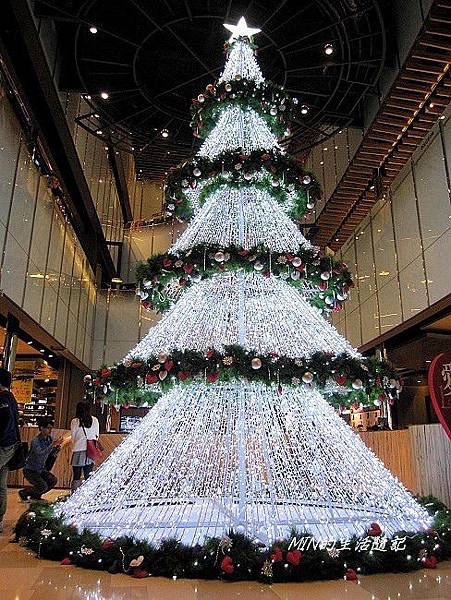 聖誕樹 (15)