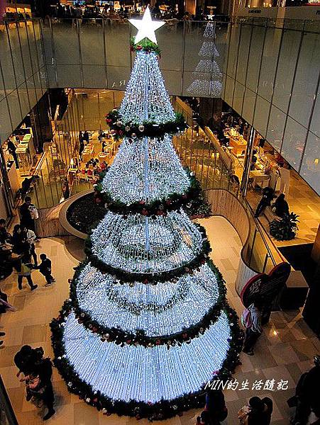 聖誕樹 (16)