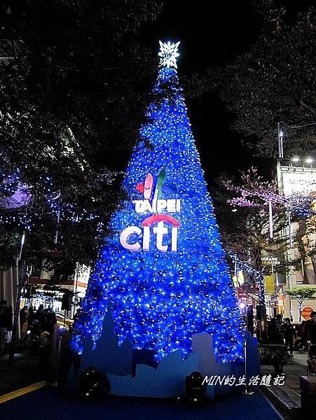 聖誕樹 (29)