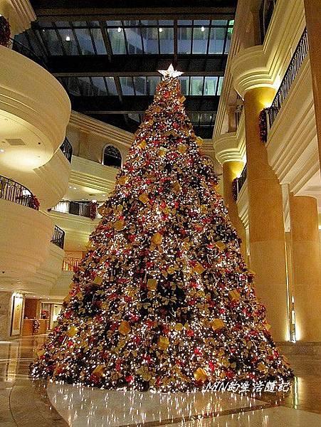 聖誕樹 (39)