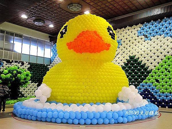 黃色小鴨 (31)