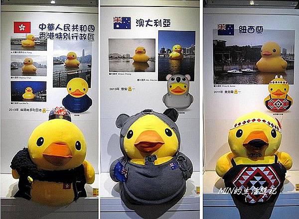 黃色小鴨 (44)