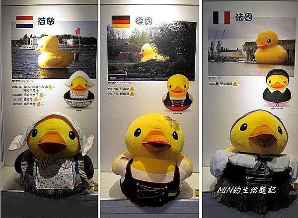 黃色小鴨 (46)