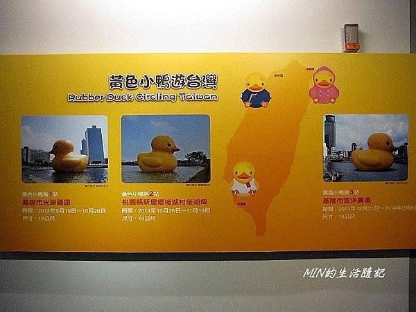 黃色小鴨 (49)