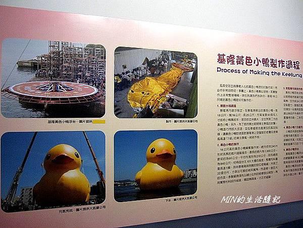 黃色小鴨 (50)