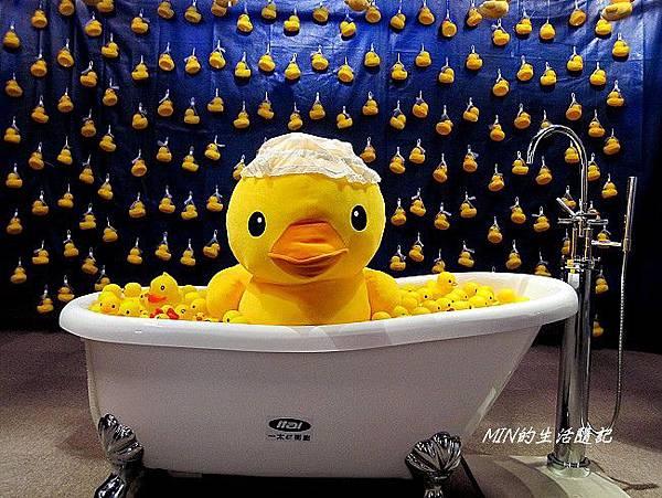 黃色小鴨 (51)