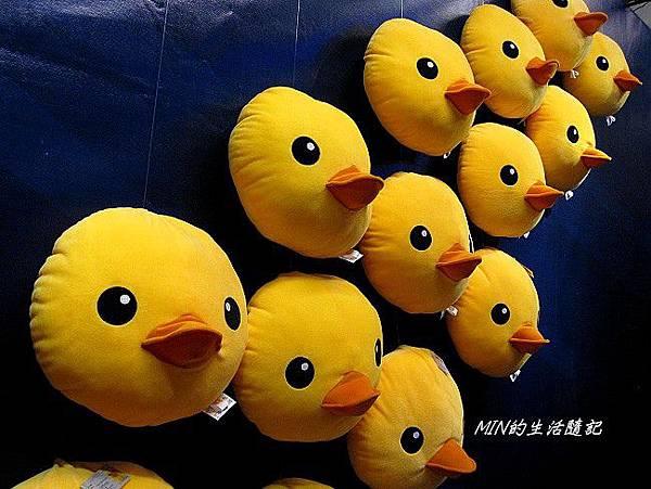 黃色小鴨 (52)