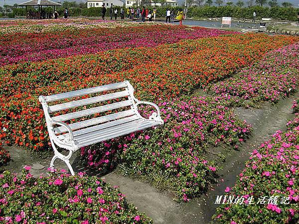 中社觀光花市(51)