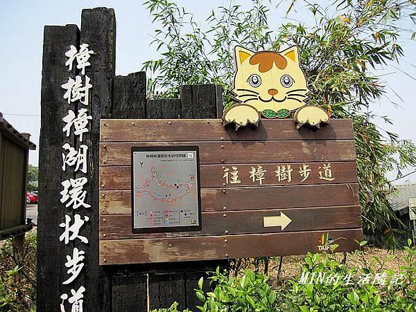 貓空樟樹步道(25)