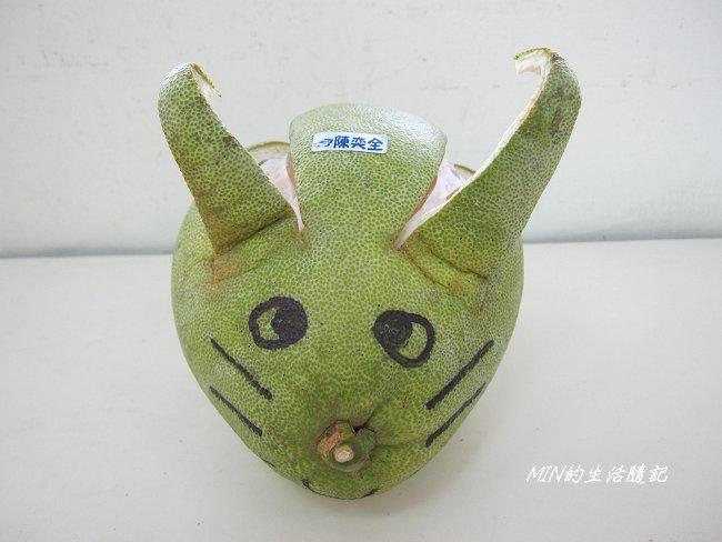 創意柚子造型 (13).JPG